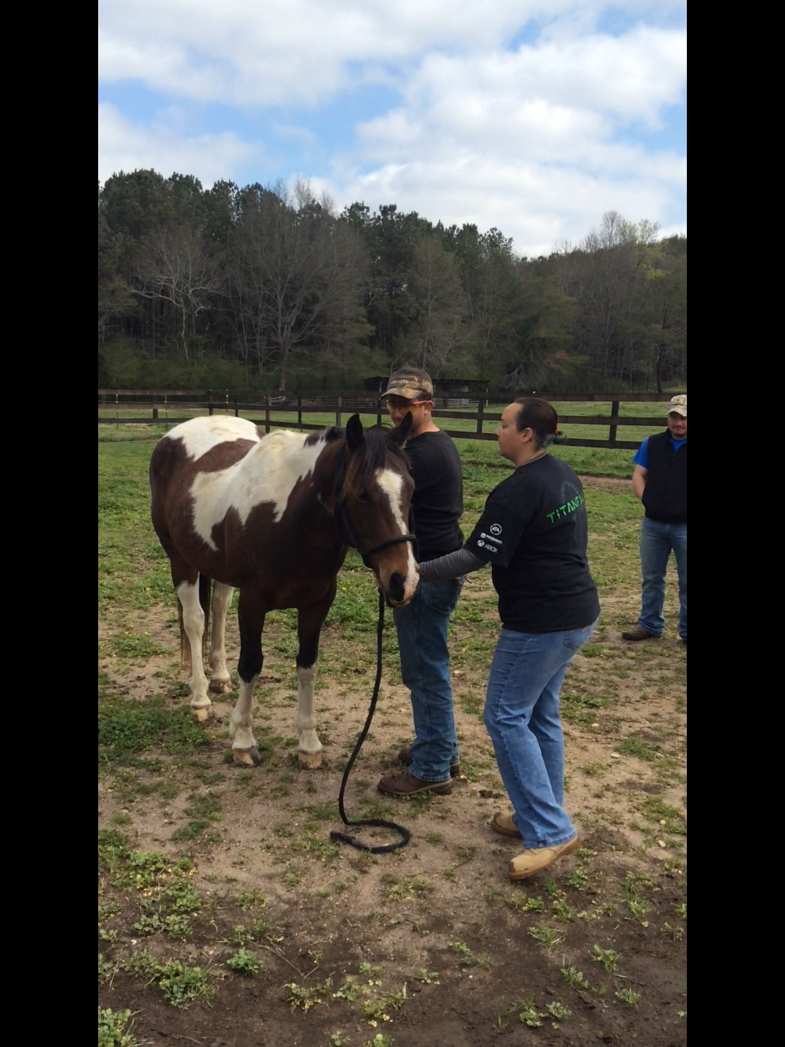 Horses helping Veterans with PTSD, project with NEHRF and Fort Villanow.PNG