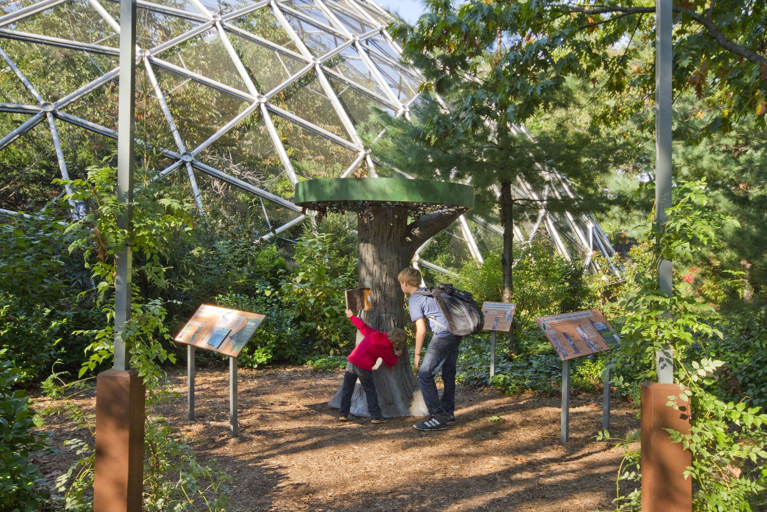 Queens Zoo 6 6989.jpg