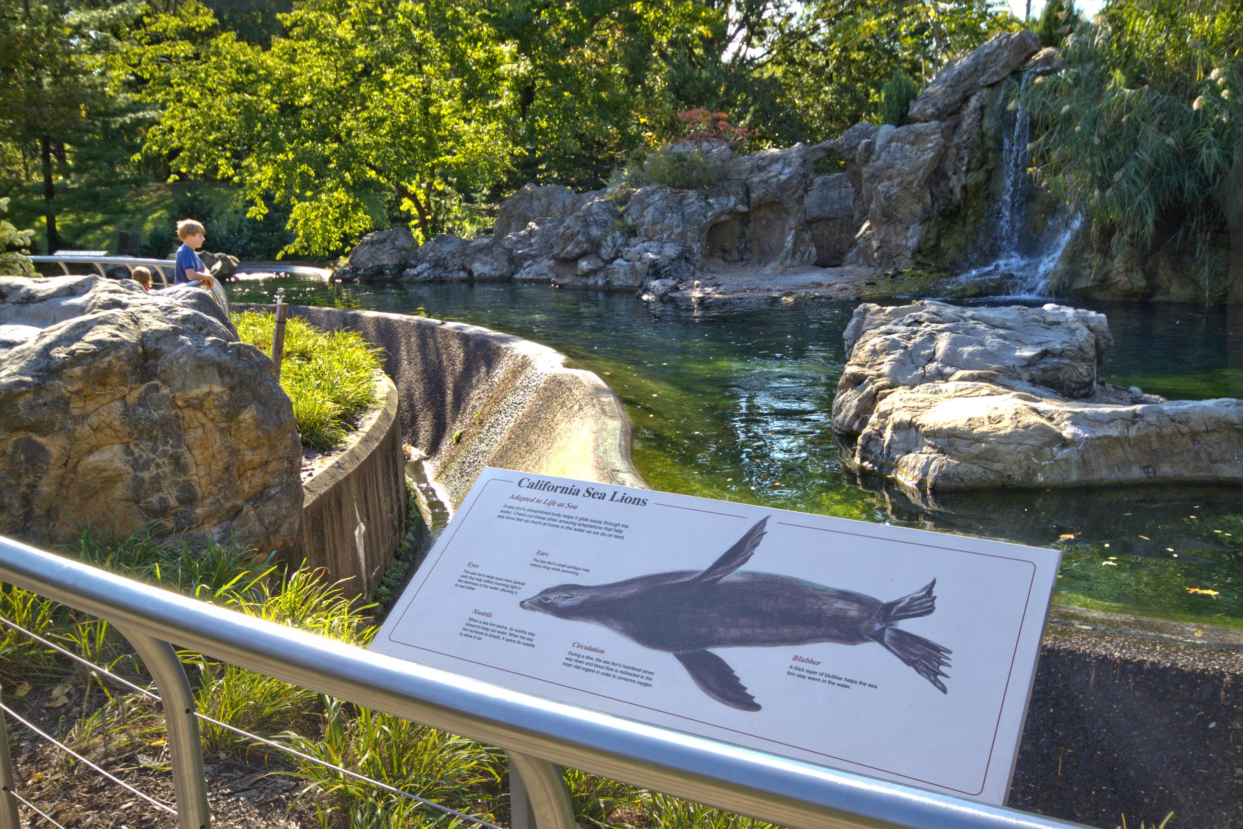Queens Zoo 8.2 6997.jpg