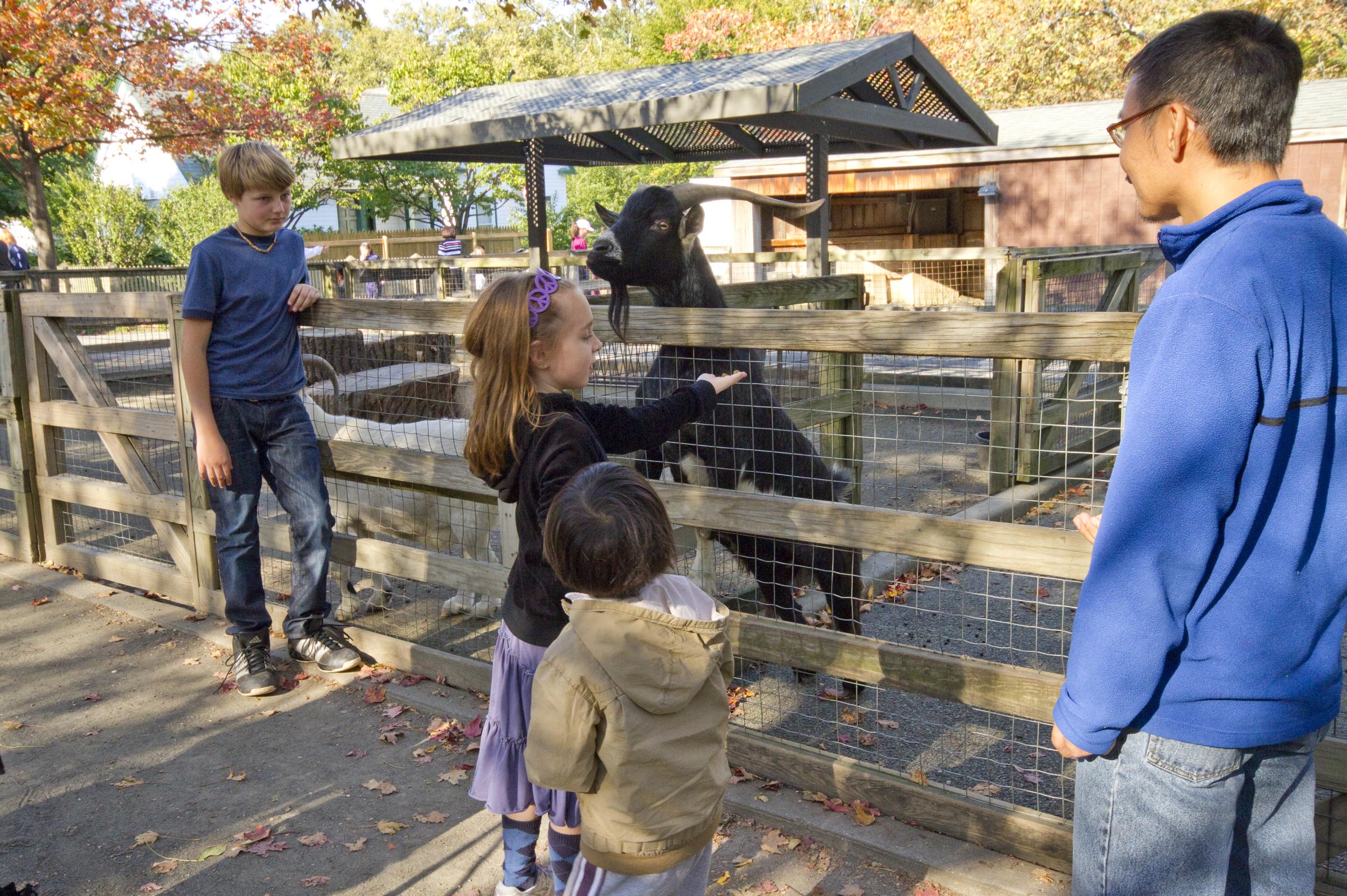 Queens Zoo 12 7015.jpg