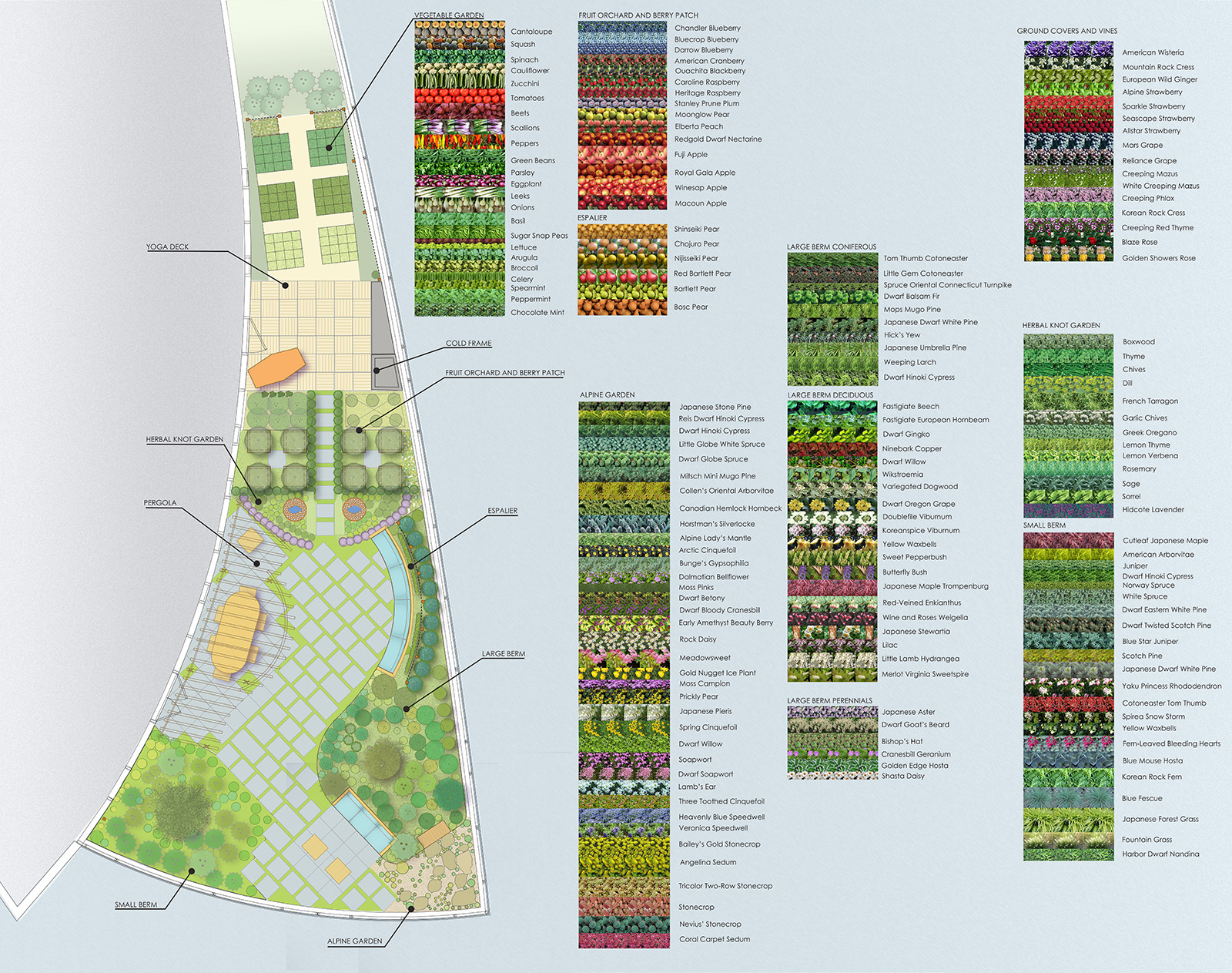 visionaire plant textures.jpg