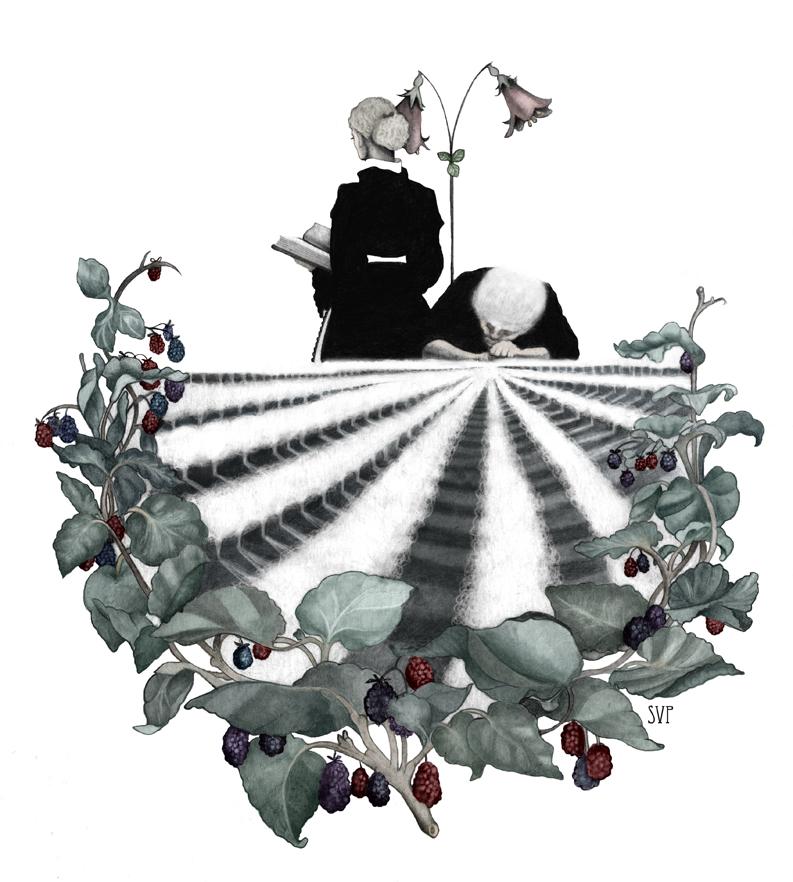 Paradislyckan_illustration_Sofie Violett Pehrsson mini.jpg
