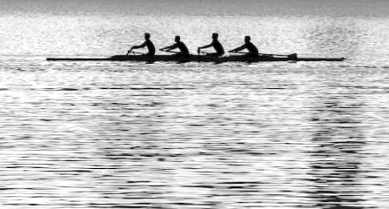 rowing. low impact. high intensity.