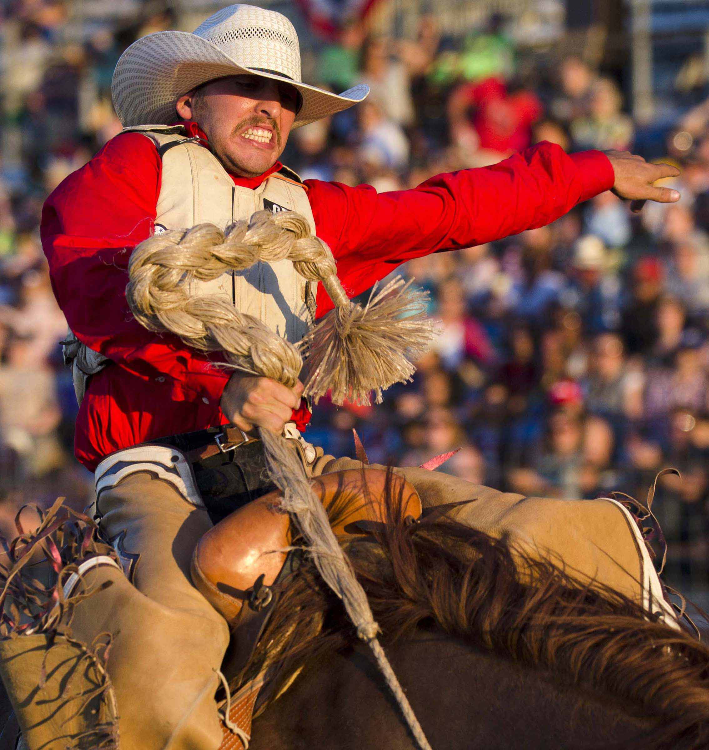 Ty Kirkland attempts to hold onto Mr. Harry during the Saddle Bronc Riding division during the World's Toughest Rodeo on Aug. 11, 2015, at the Indiana State Fair.