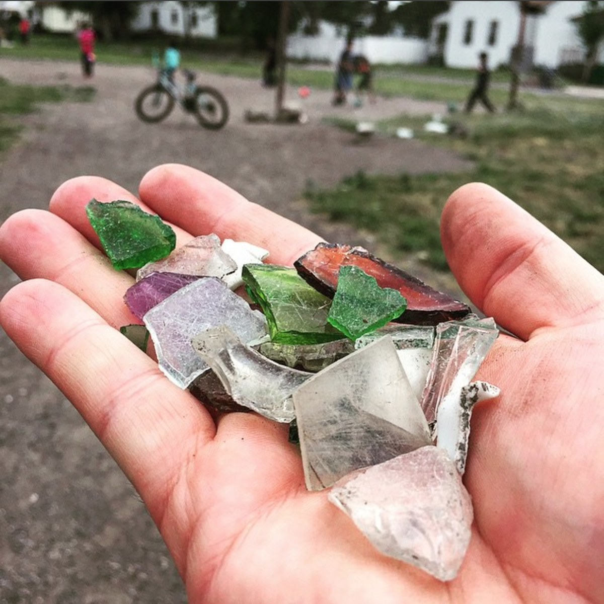 A handful of glass from the field