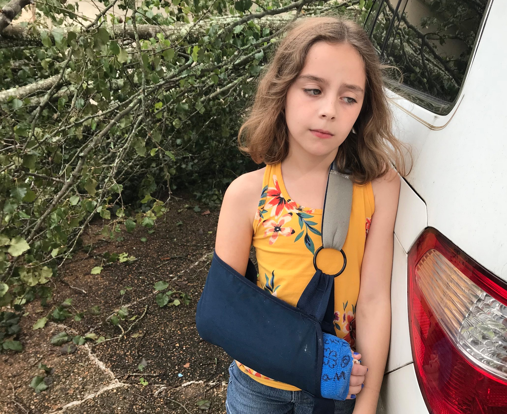 Lily trying on her most pitiful face for comedic effect beside the crushed van.