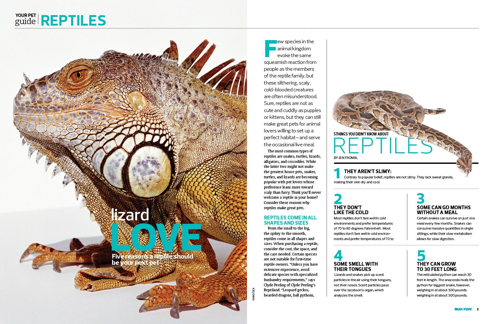 USA Today Pet Guide Magazine
