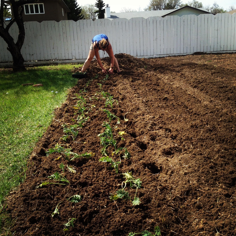 green-sister-gardens-farm