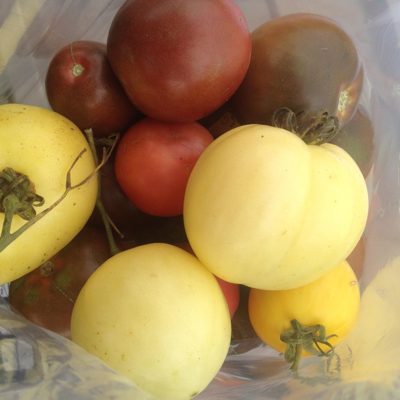heirloom-tomato.jpg