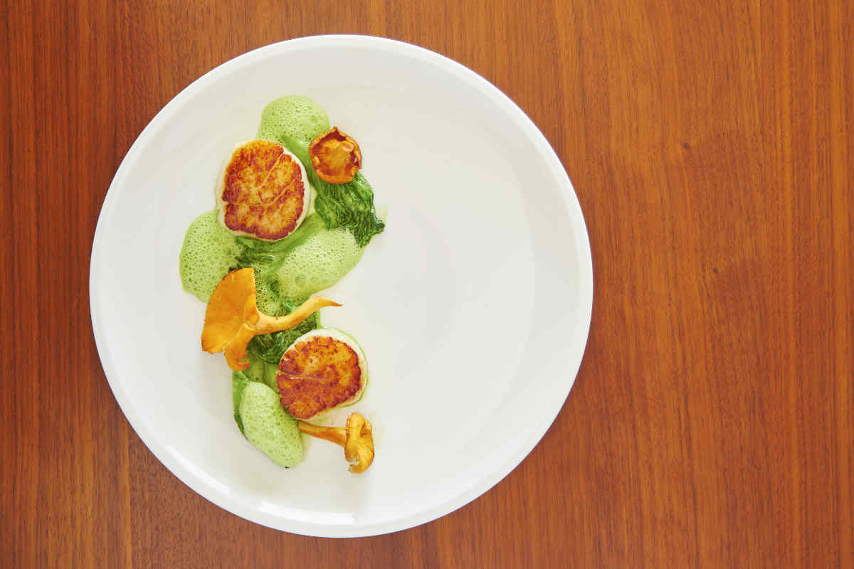 Pan Seared Dry Scallops | Chanterelles | Pea Puree | Wild Ramp Emulsion Sauce
