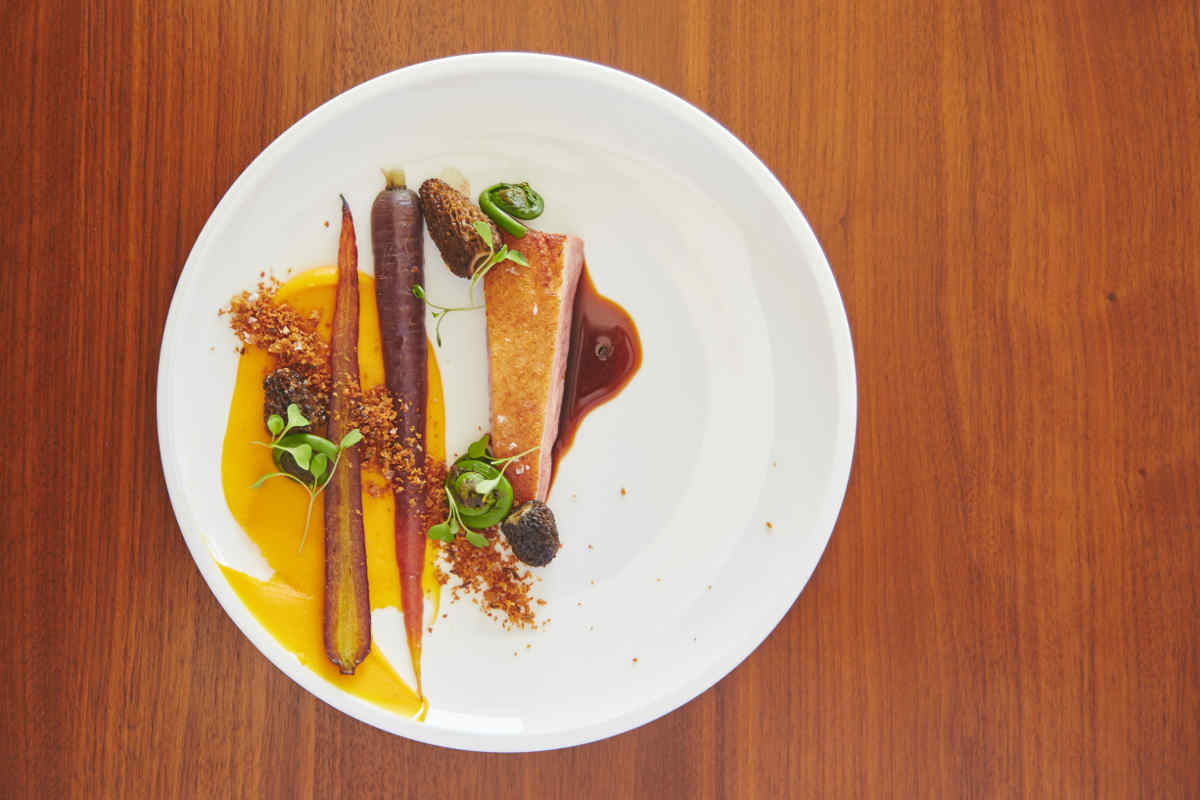 Hudson Valley Duck Breast | Carrot Puree | Fall Vegetables | Jus