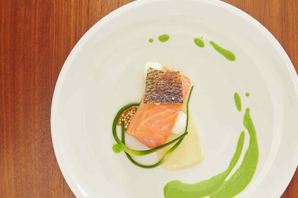 Salmon Mi Cuit | Horseradish Cream | Pickled Mustard Seeds