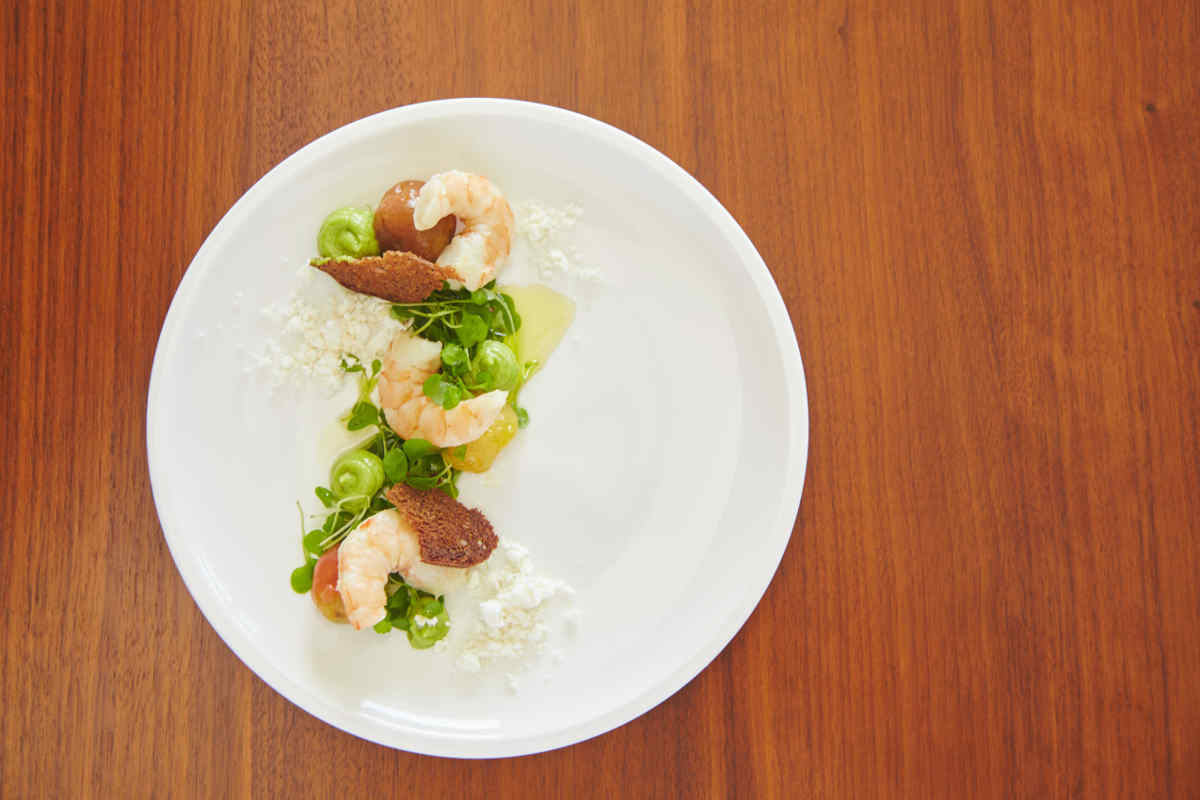 White Wine Poached Shrimp | Garden Herb Salad | Avocado Mousse