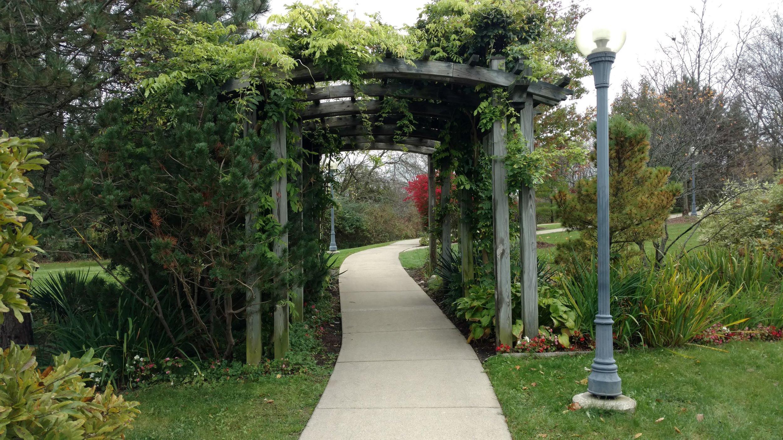 County Farm Park trellis.jpg