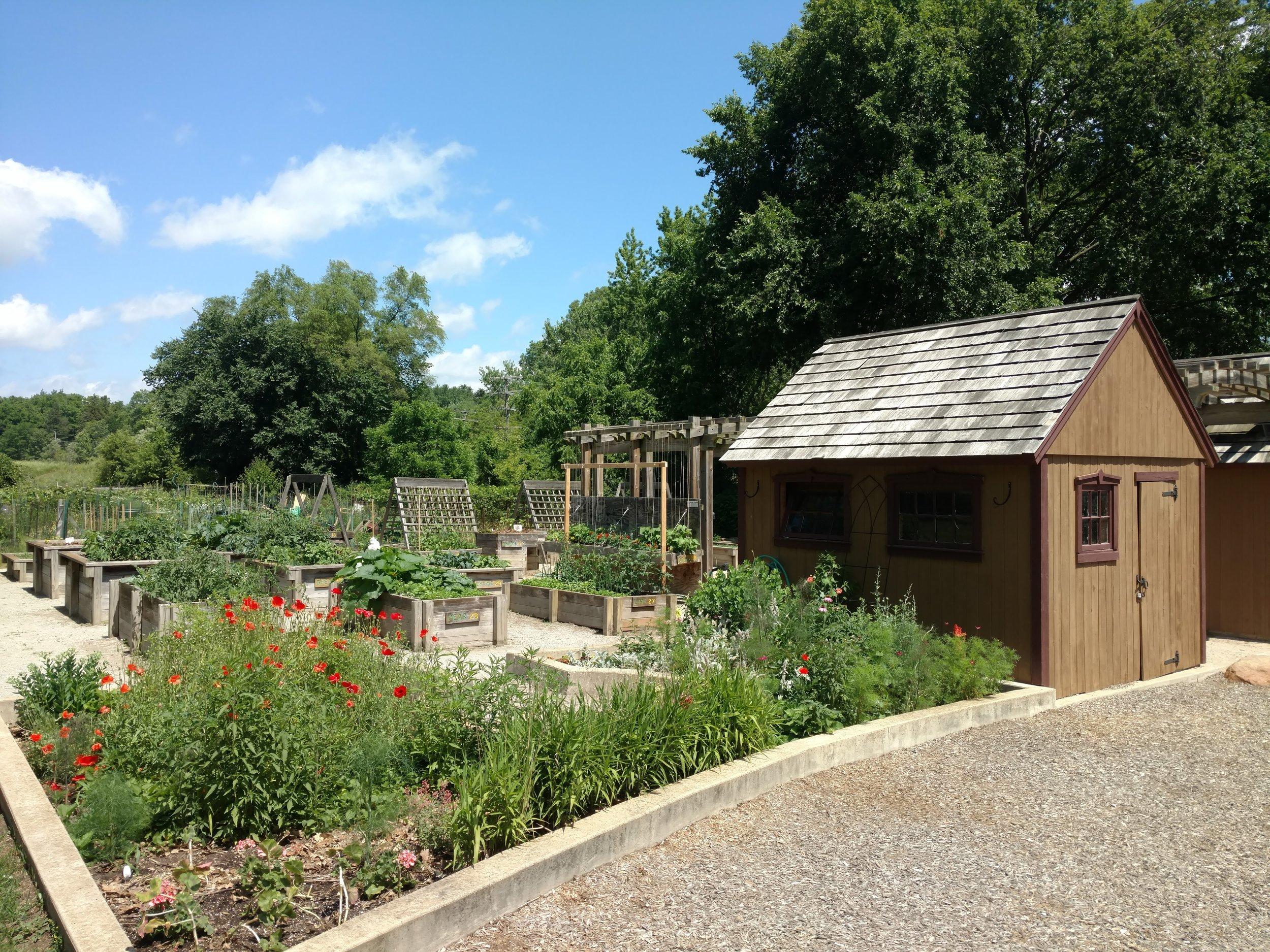 Community Gardens ADA Compliant - County Farm Park.jpg