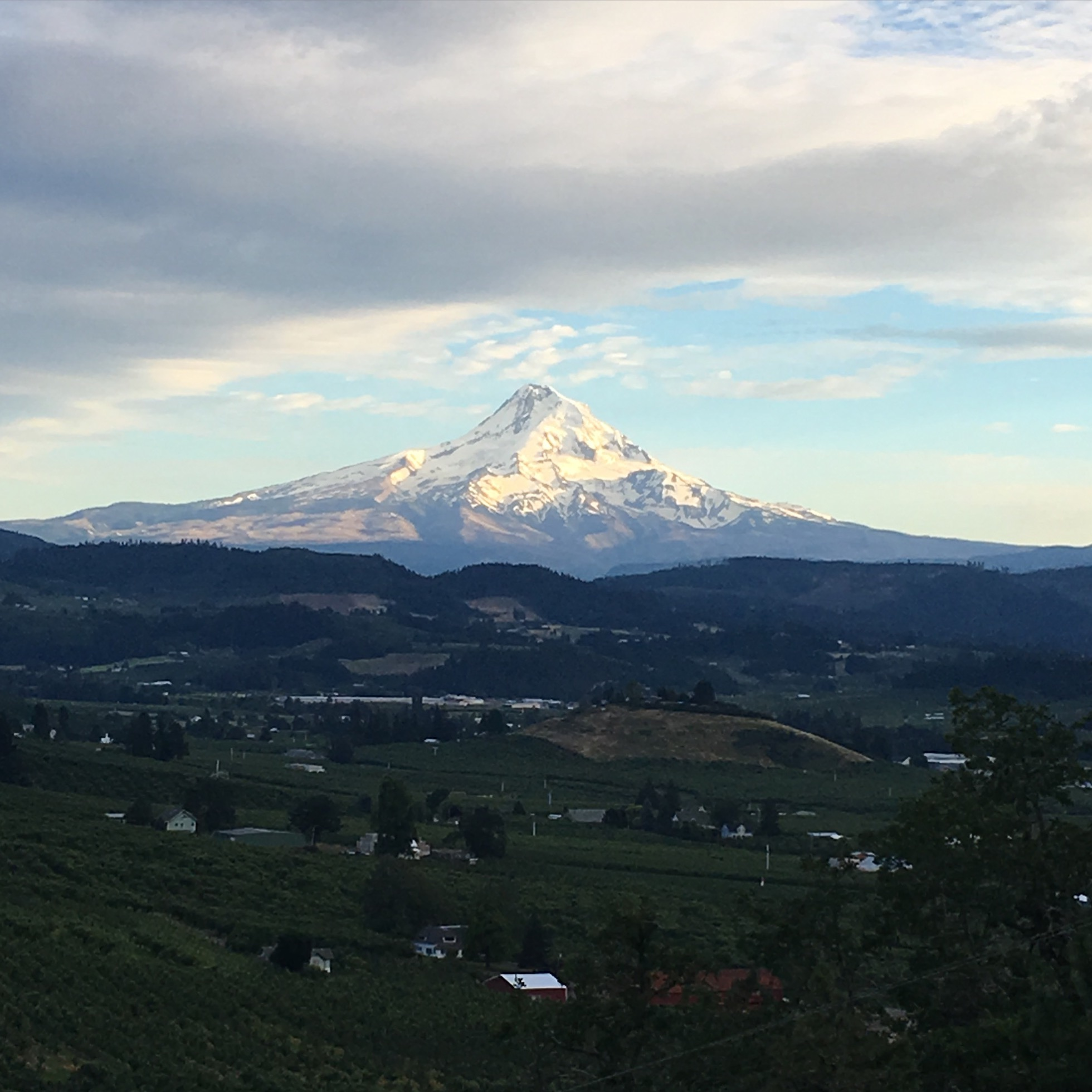 The view from the back porch of the Panorama Lodge, Hood River, OR