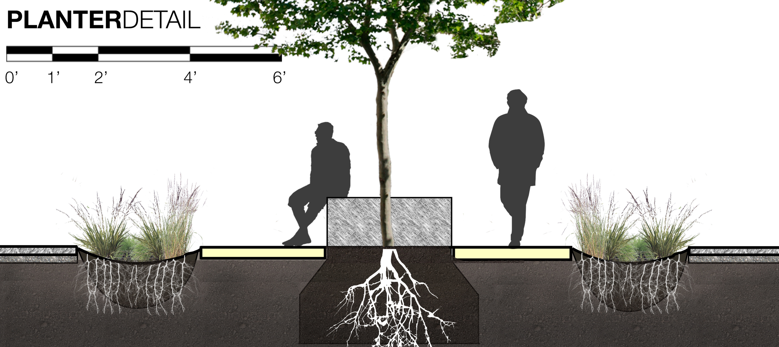 Inbetween each tree would be a lit walkway as well as a place for seating.