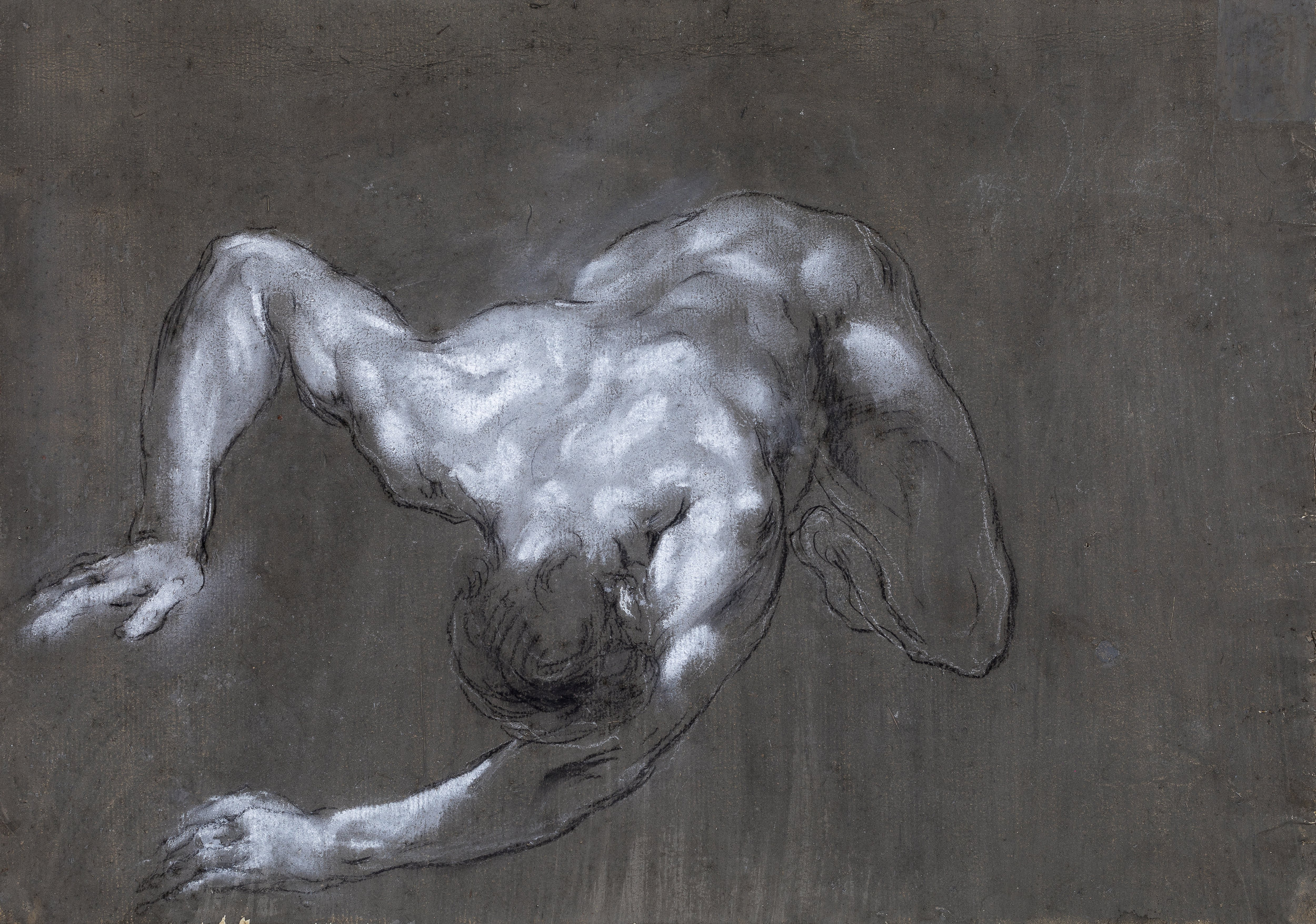 Francesco Monti  (b. 1685)  A Crouching Man, Seen from Above (recto)  11 1/16 x 15 ¾ in. black and white chalk on dark-grey prepared paper