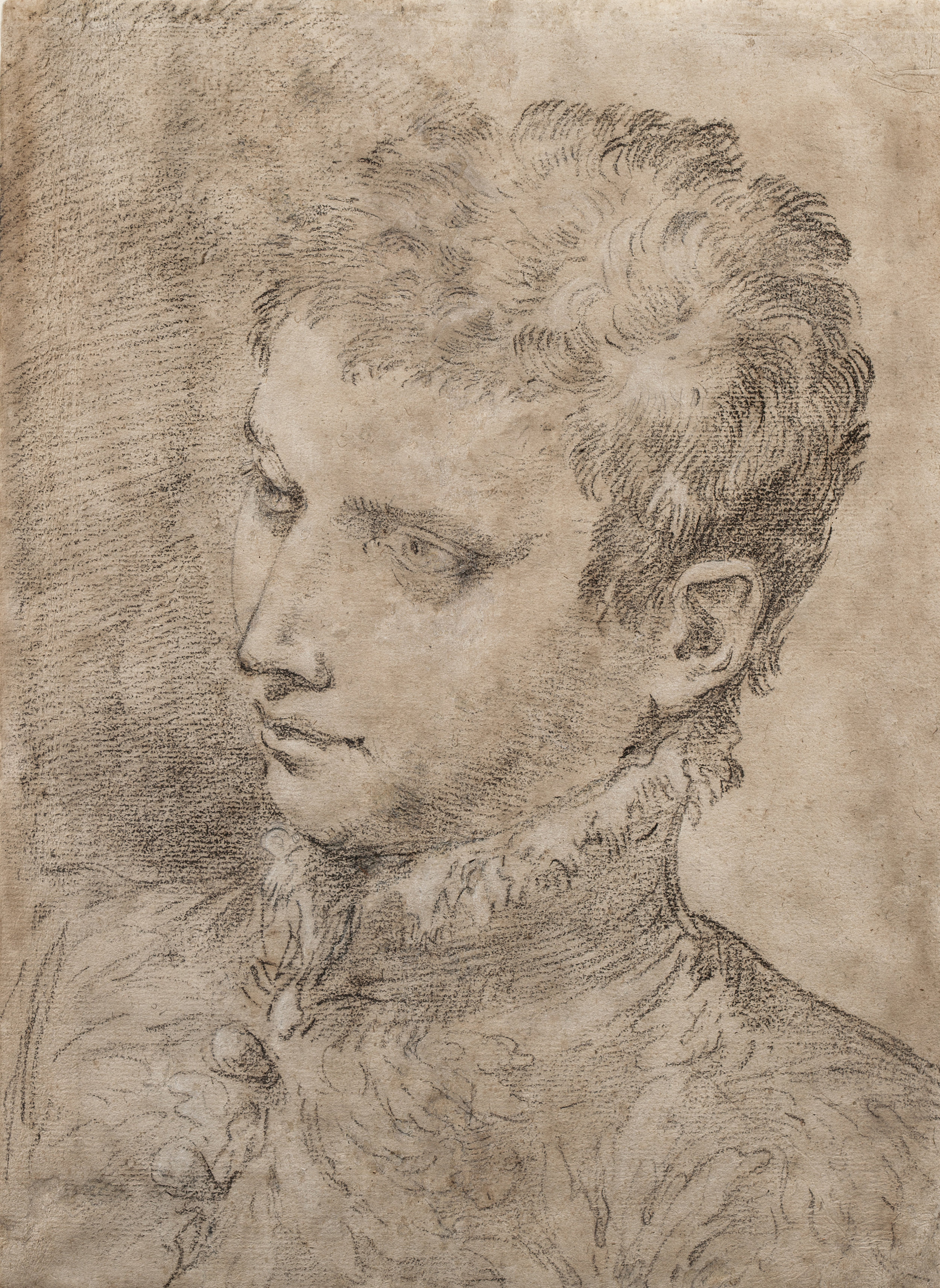 Donato Creti  (b. 1671)  Study of a Young Man  16 ½ x 12 in. black chalk with white heightening on light brown paper