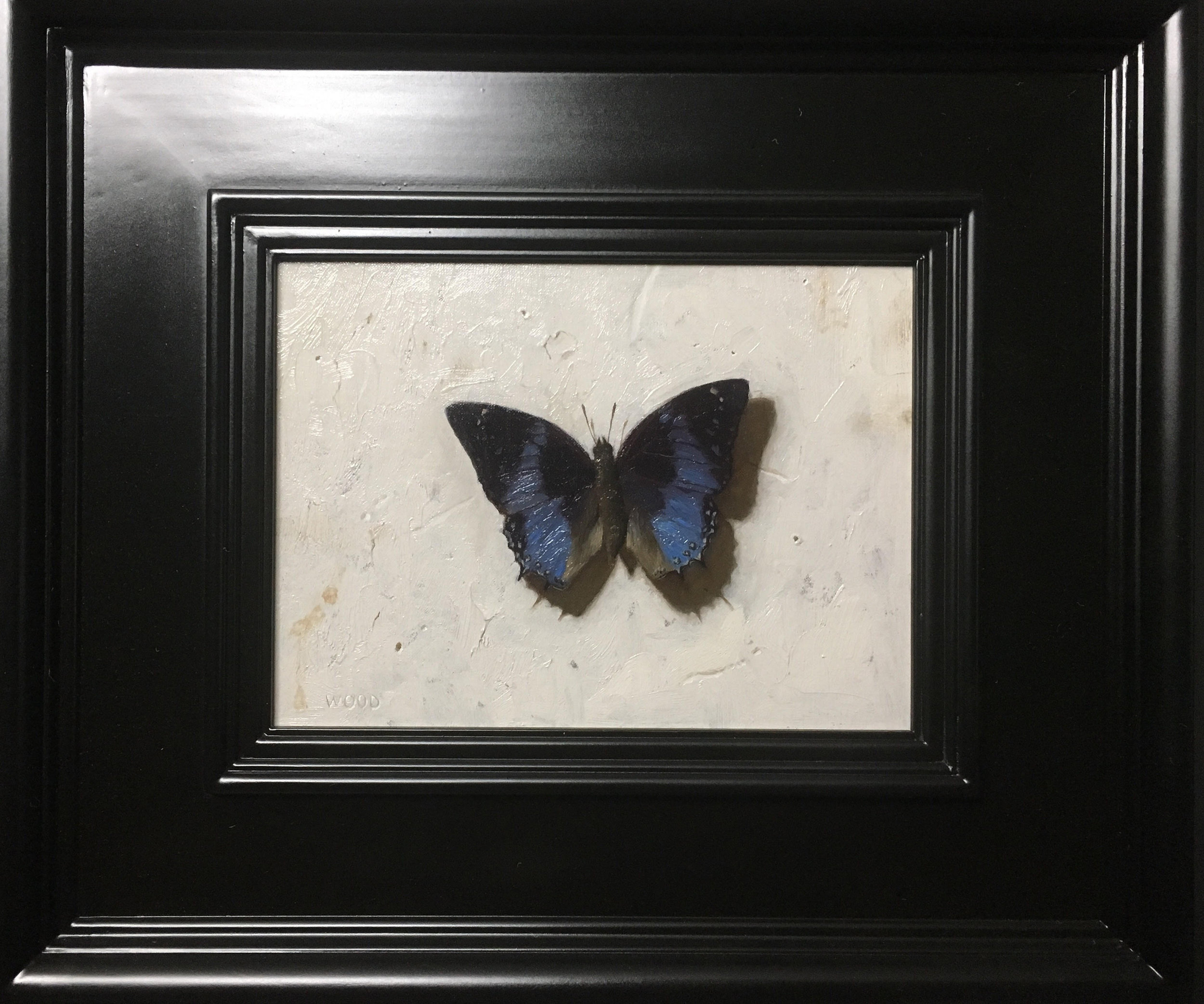 Blue Butterfly  by Justin Wood, 2018, oil on canvas, 6 x 8 in, $1,600