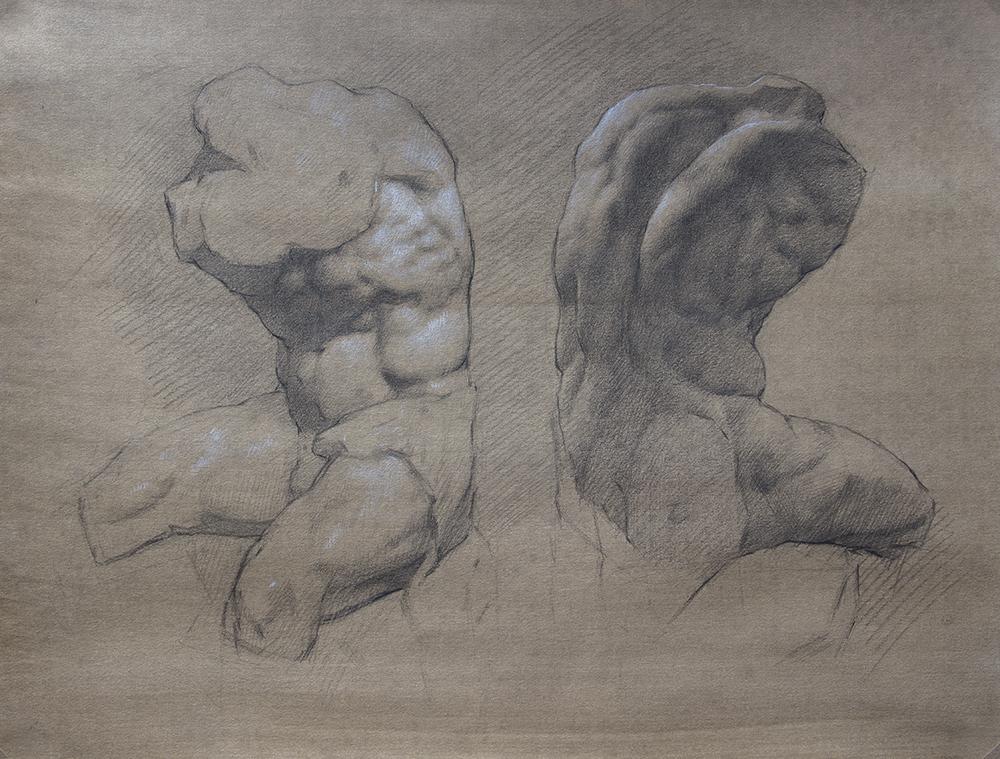Belvedere Torso  2018, graphite and white chalk on paper 15 x 19 in $1,800