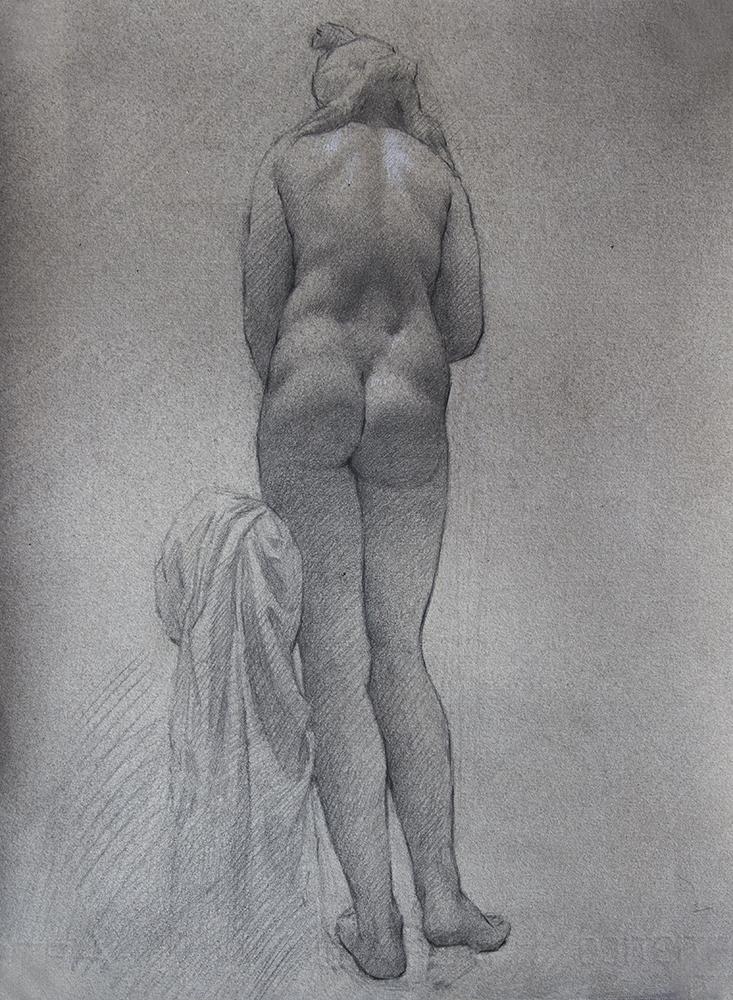 Capitoline Venus  2018, graphite and white chalk on paper 15 x 11 in $1,100