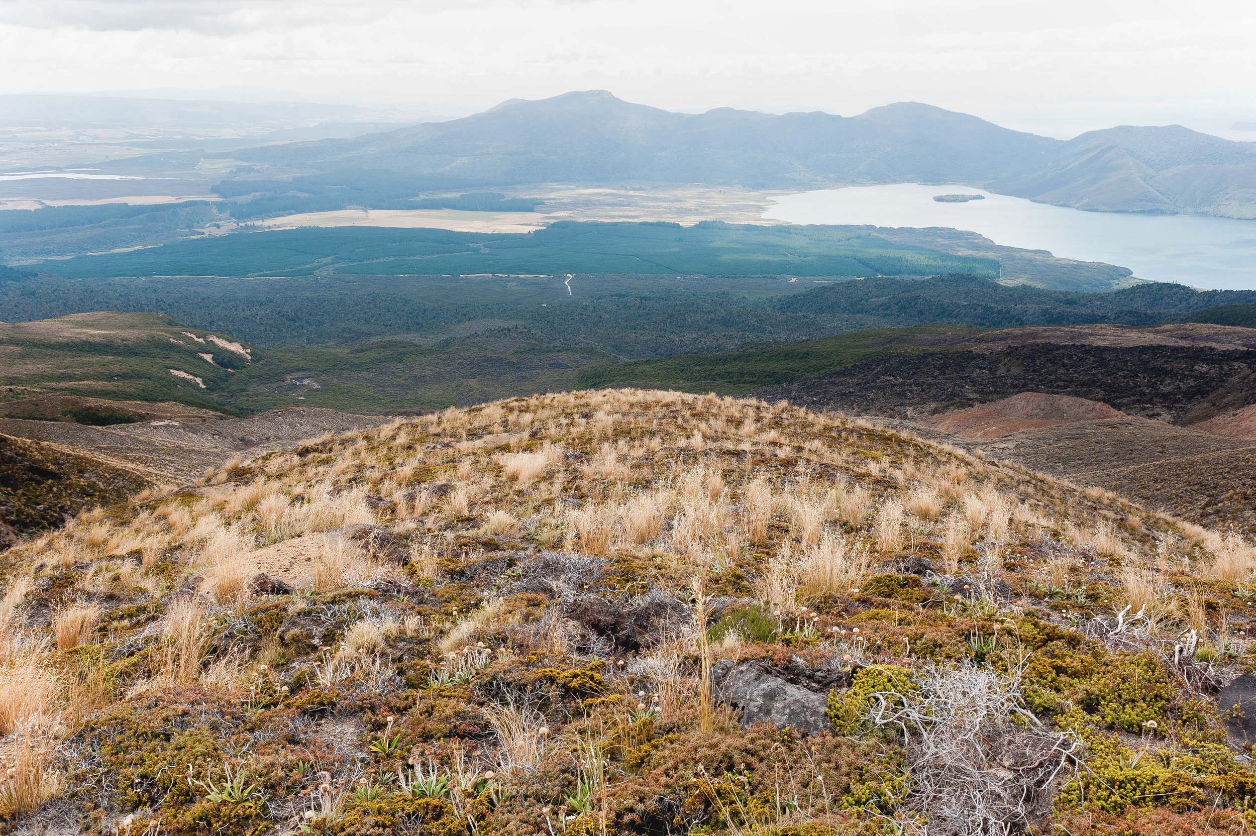 tongariro crossing-9028.jpg