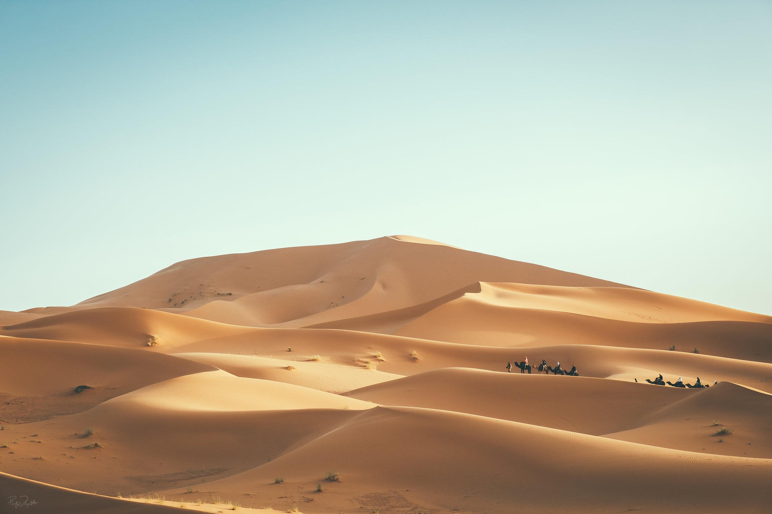 SAHARA_DESERT_01.jpg