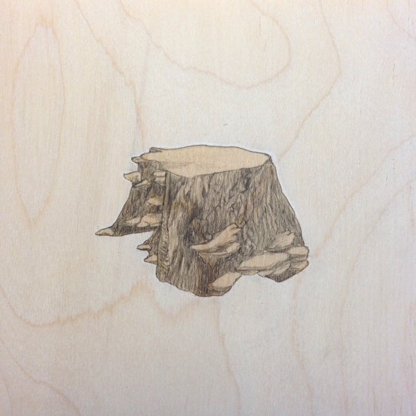 "Stump 2 / graphite and stain on birch panel / 6 x 6"" / SOLD"