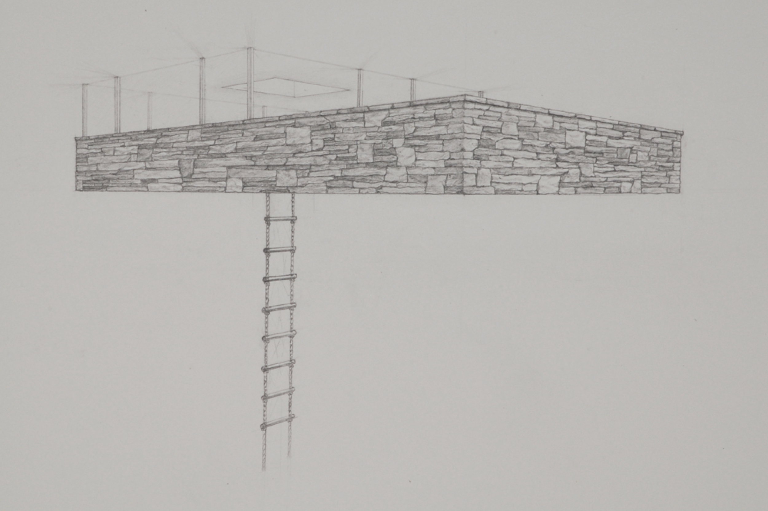 Tree House 3 (detail) / graphite on paper / 22 x30""