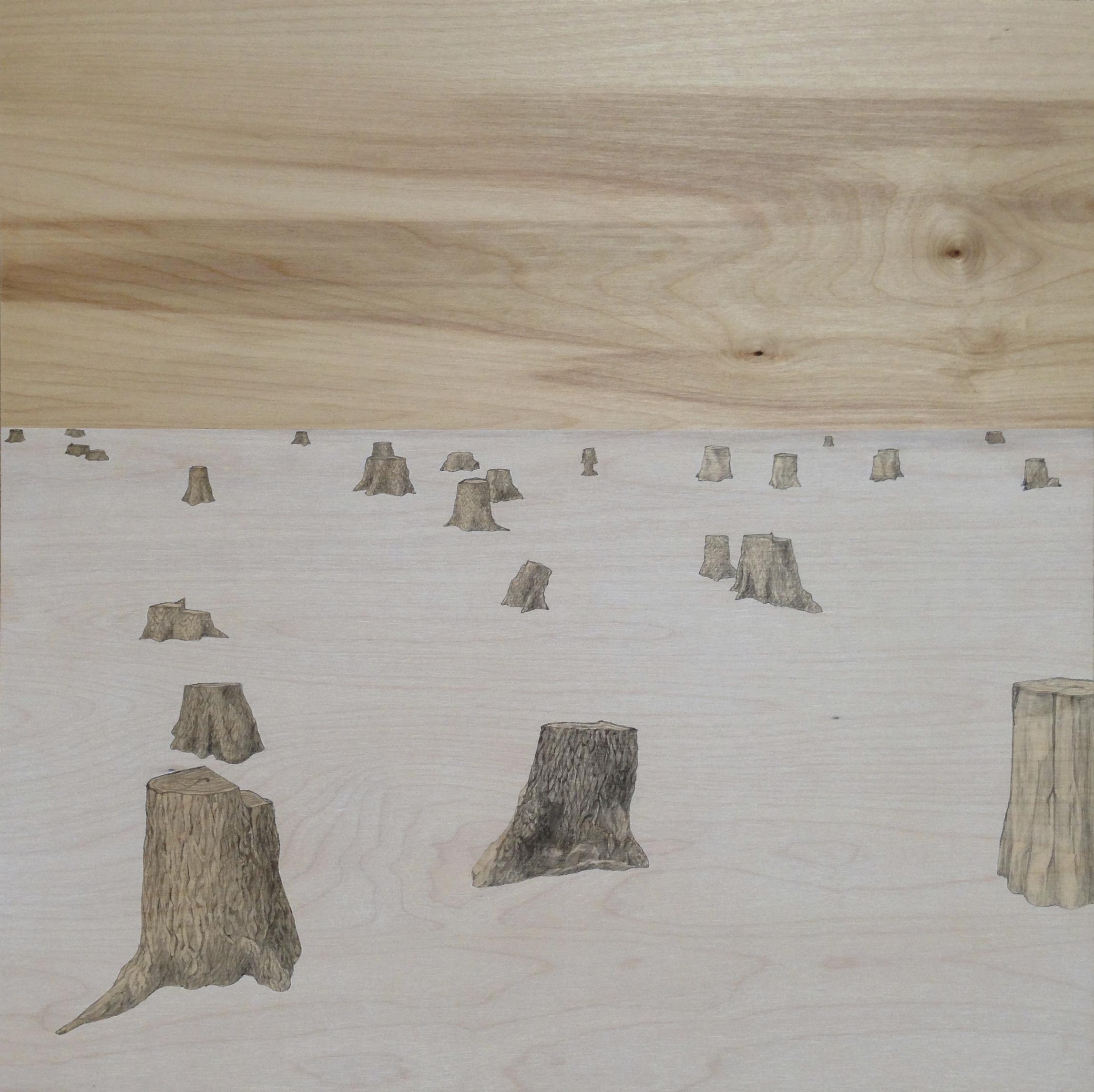 "Untitled (Stumps), 20 x 20"""