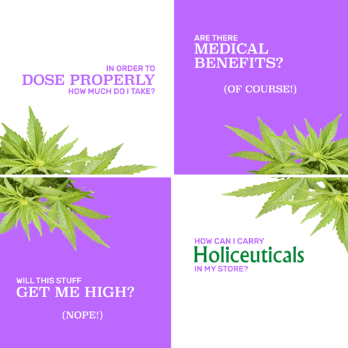 Holiceuticals Website Design   Holiceuticals sells flavored & unflavored CBD Oils & Canine Chews - I conceptualized the brand identity & created their online store [project in progress]