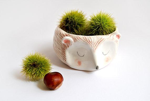 barruntando_hedgehog.jpg