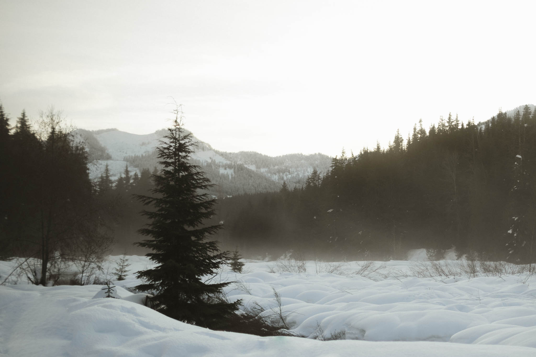 2016-1 Shan snow Web-13.jpg