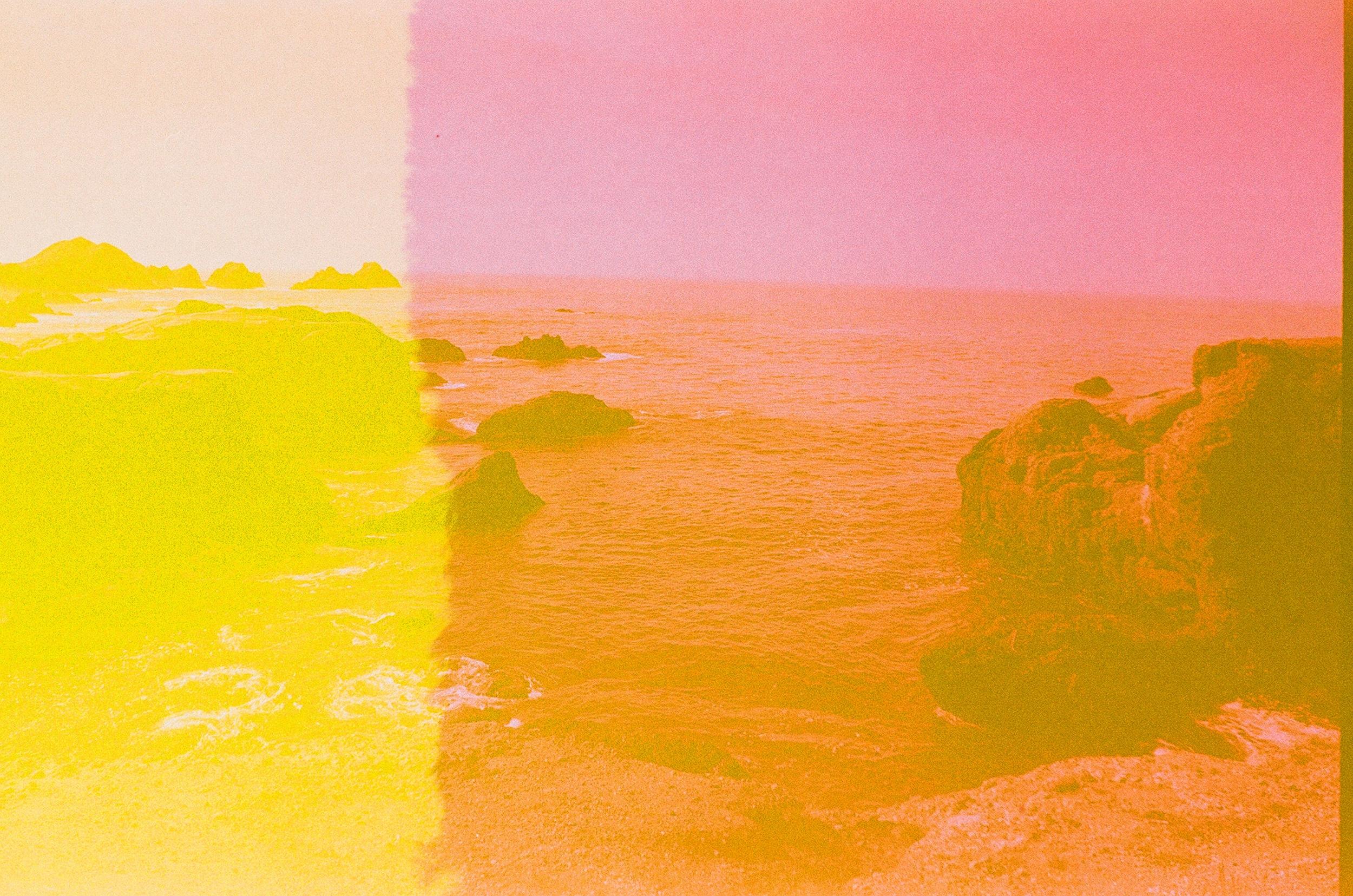 Pink Lobos, 35mm