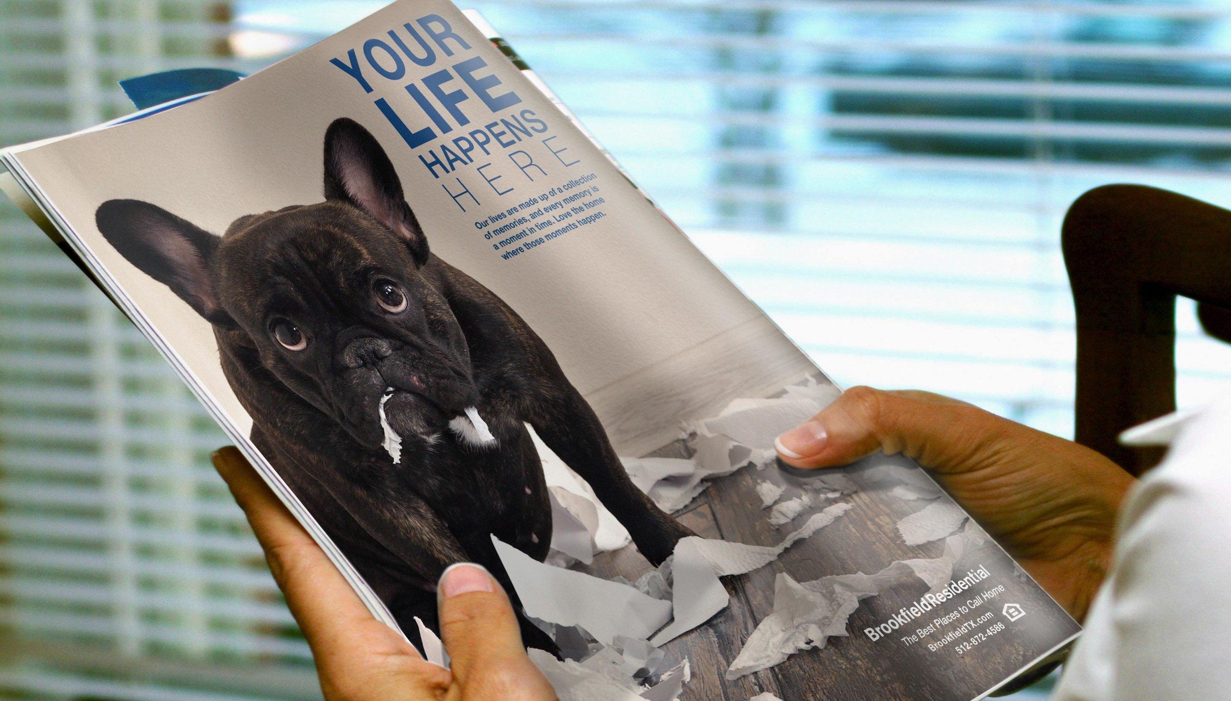 bf_ylhh_dog_magazine_fullpg_mock_user.jpg