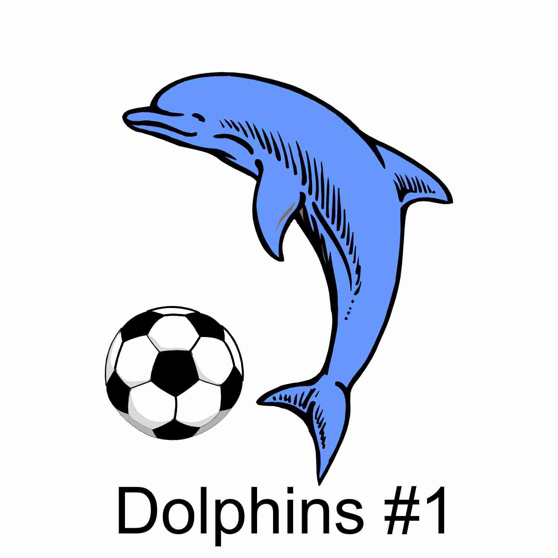 Dolphins #1.jpg