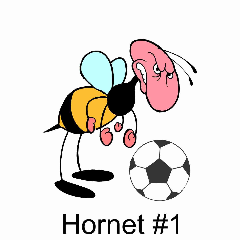 Hornets #1.jpg