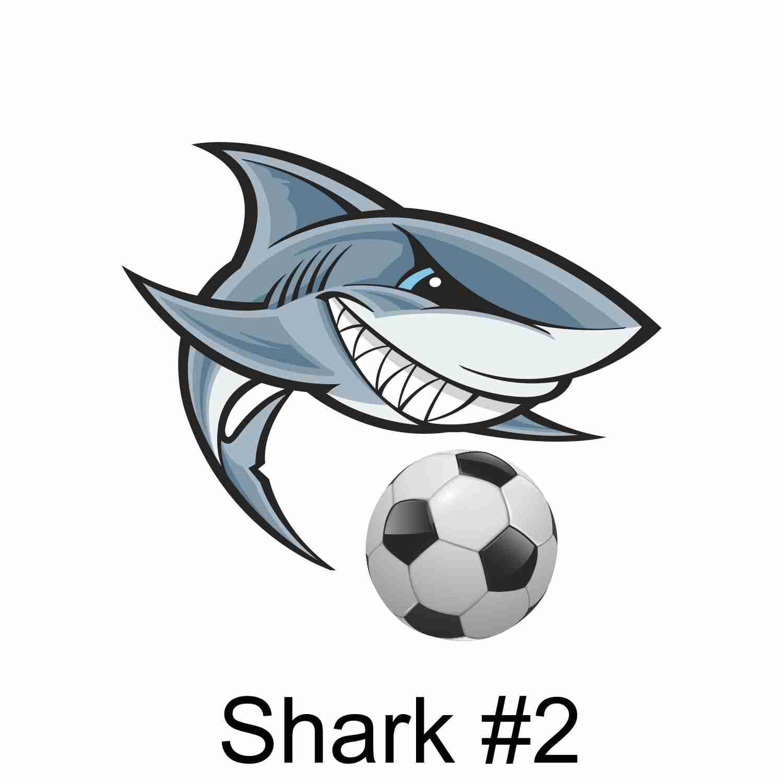 Shark #2.jpg