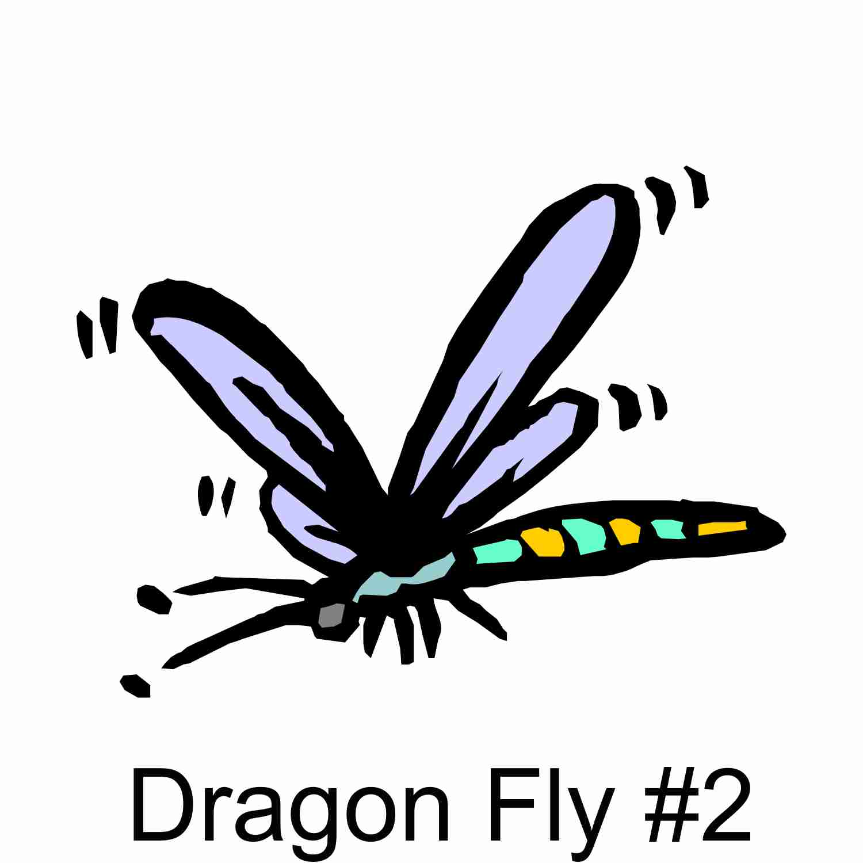 Dragon Fly #2.jpg
