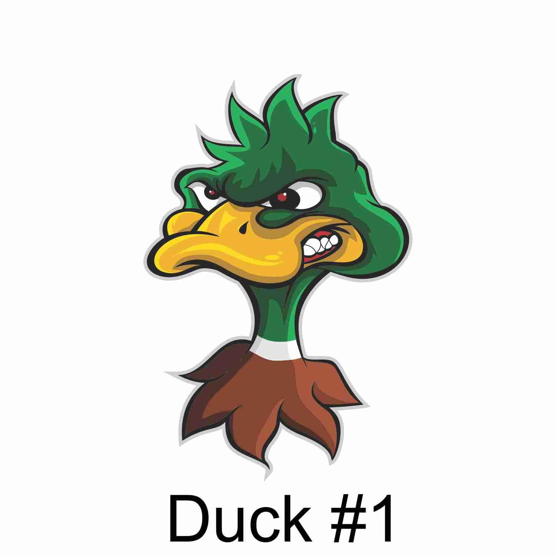 Duck #1.jpg