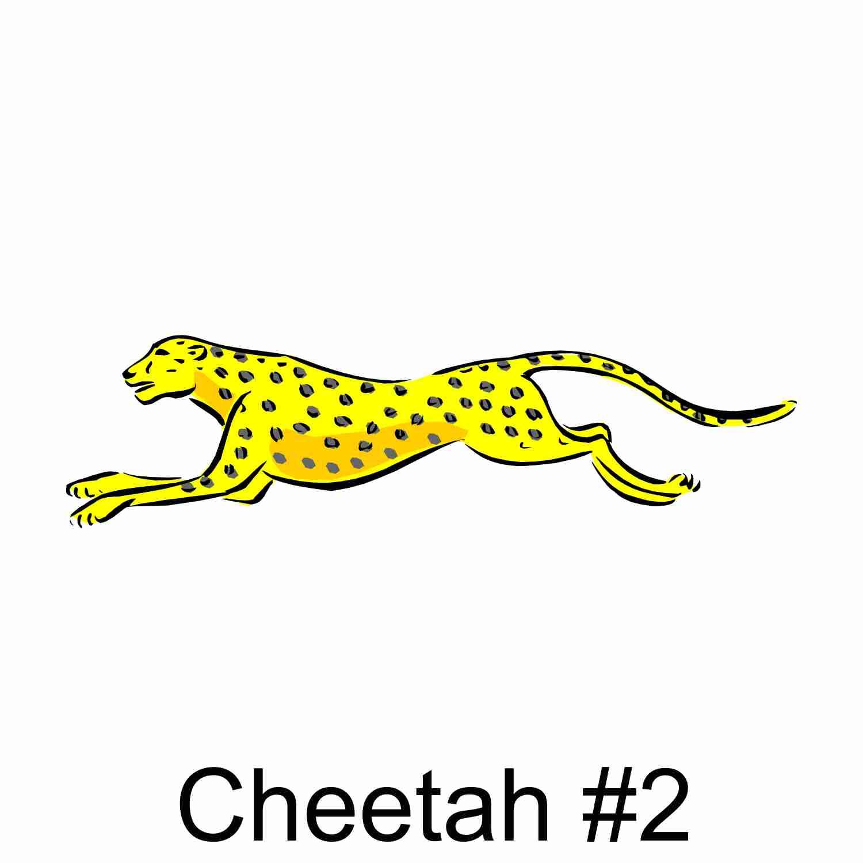 Cheetah #2.jpg
