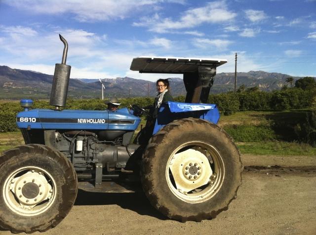 Monica Tractor.jpg