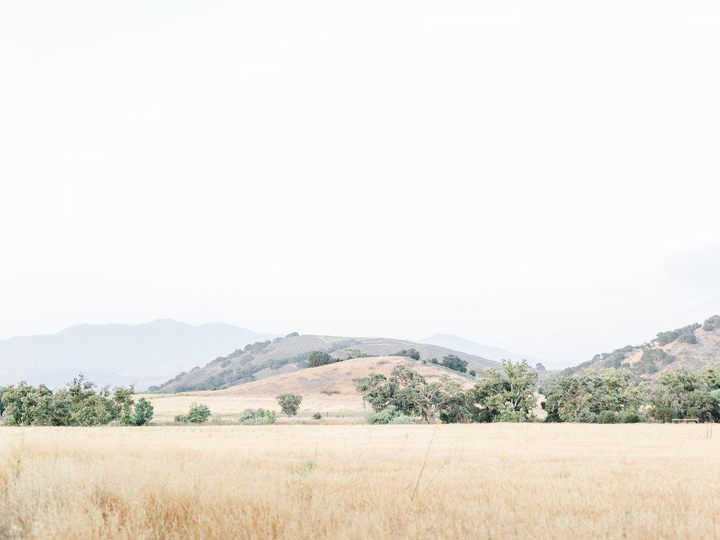 alegria-by-design-wedding-planner-planning-event-design-santa-barbara-day-of-coordinator-kestrel-park-santa-ynez-fields-castle-lavender-garden-mrs-box (2).jpg