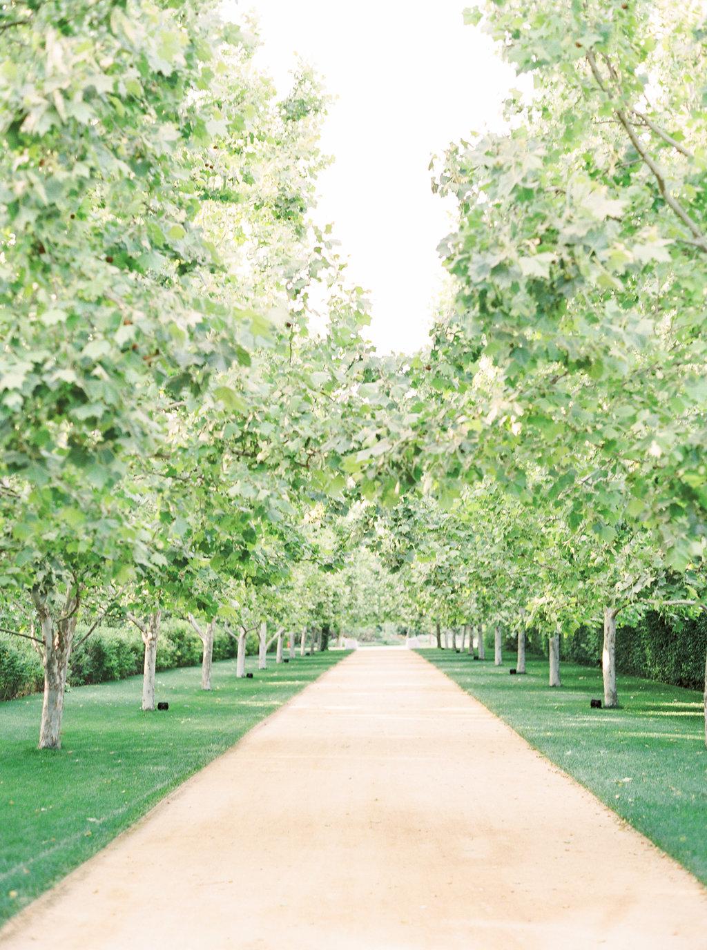 alegria-by-design-wedding-planner-planning-event-design-santa-barbara-day-of-coordinator-kestrel-park-santa-ynez-fields-castle-lavender-garden-mrs-box (38).jpg