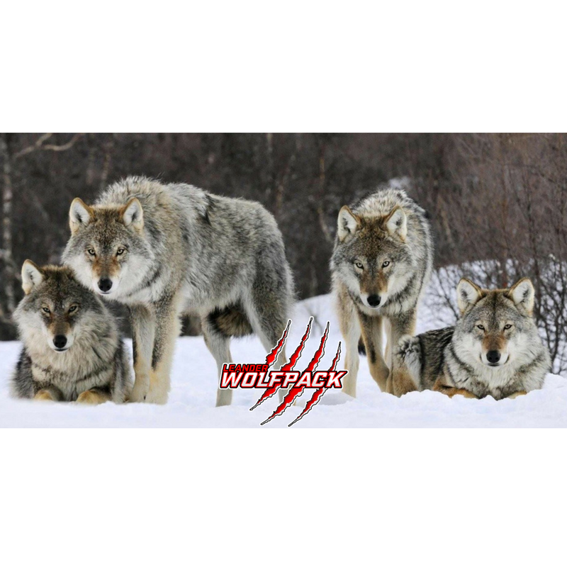 WOLFPACK CENTER.png