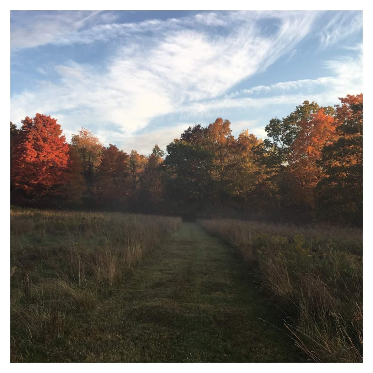 Fall at M & D farm 5.JPG