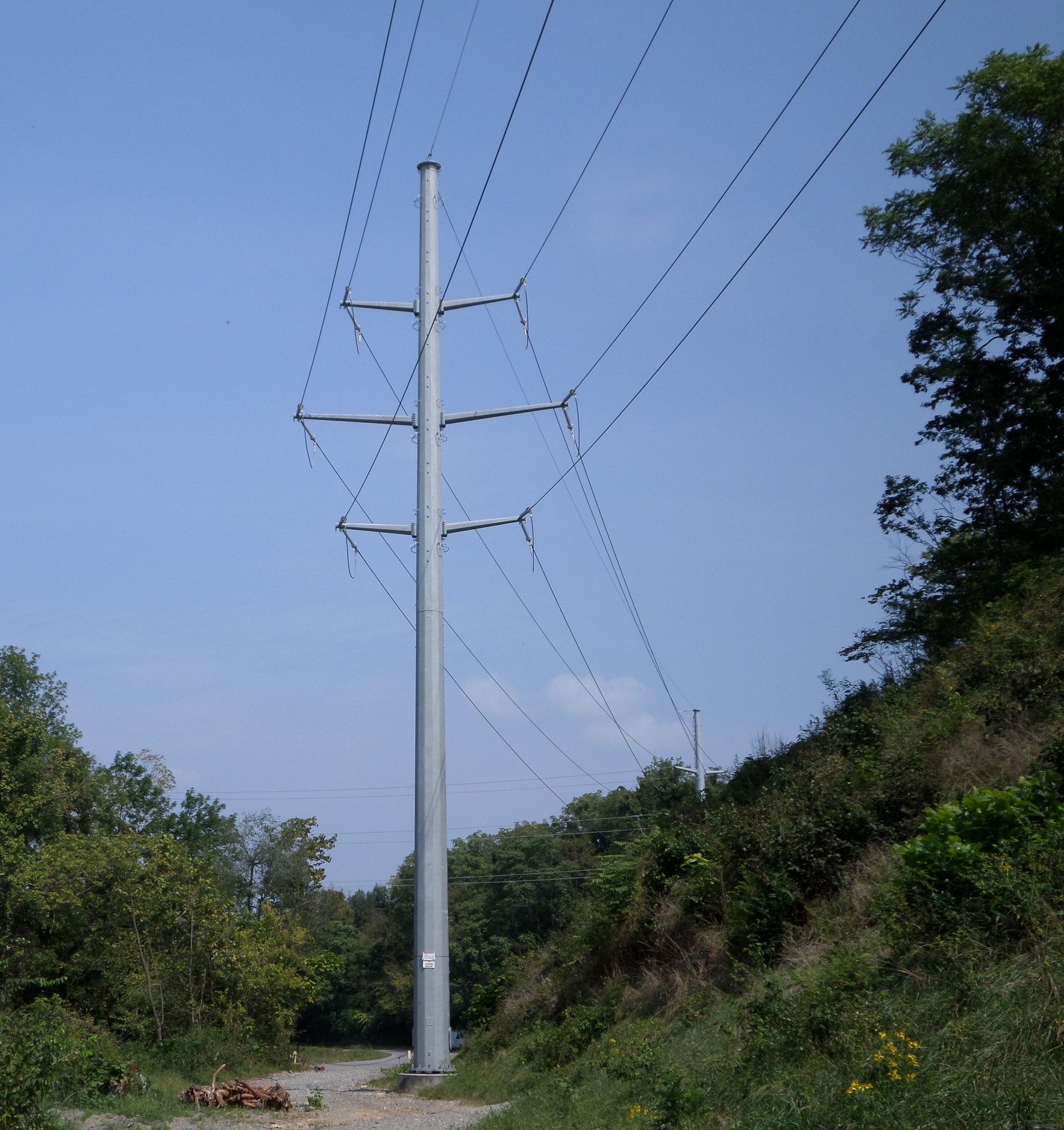 Monopole transmission line similar to the type that has been included in the AEP proposal  Source: www.aeptransmission.com