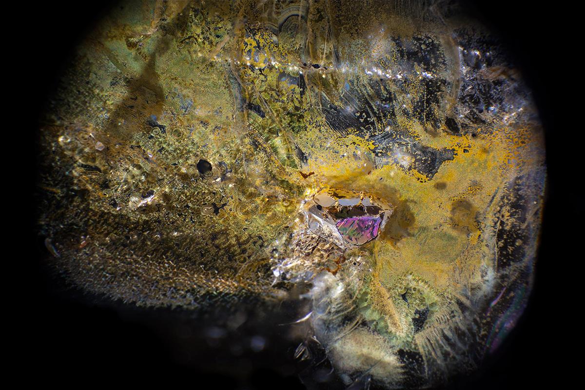 Limonite staining in quartz by @mineralien Brazil Field of view = 8.4mm • Depth of field = 3.1mm