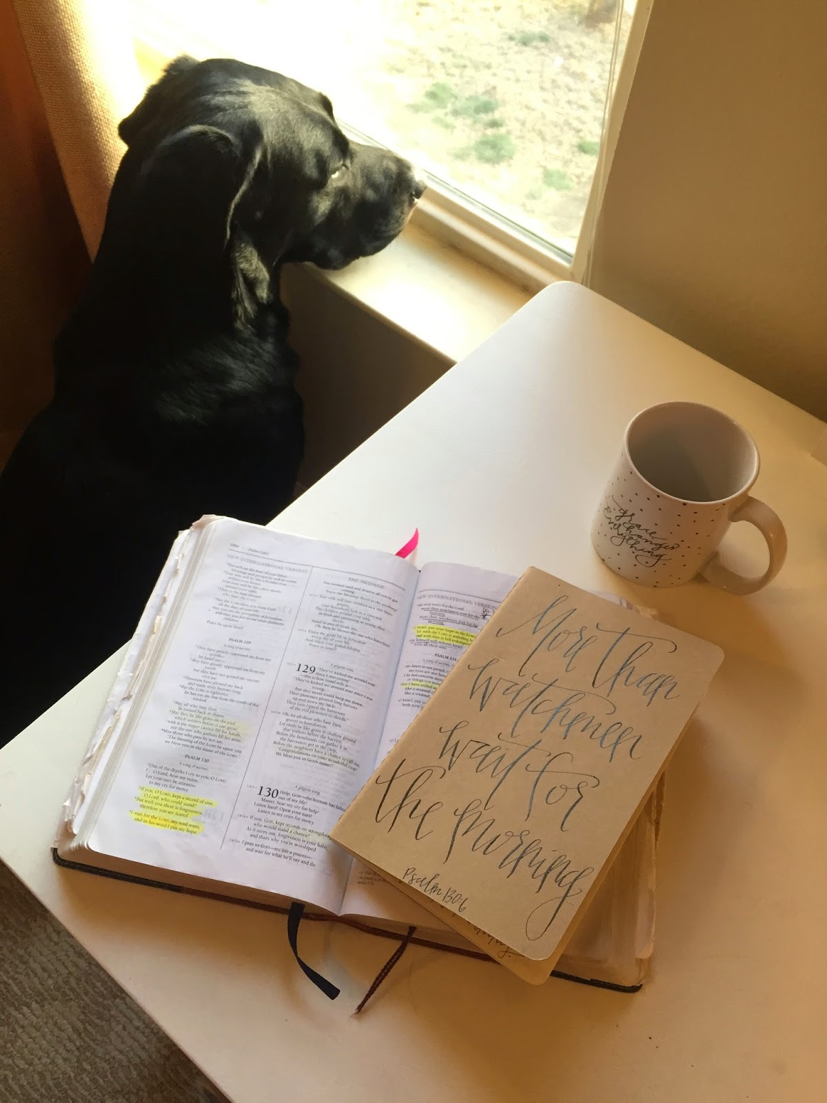 [my dog Buck does this  every single morning   . waiting for his dog pal around the corner to go for a walk. I pray the Lord will use him to remind me often of this!]